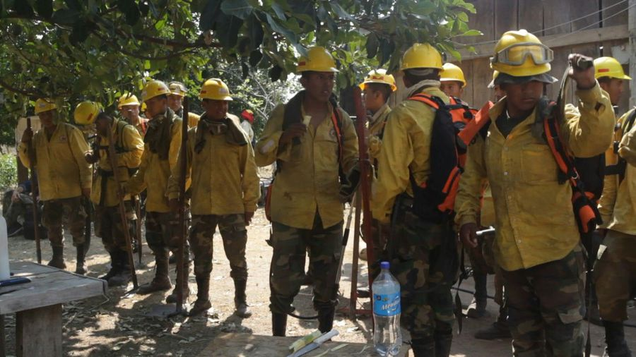 Firefighters in Bolivia's Pantanal monitor the area