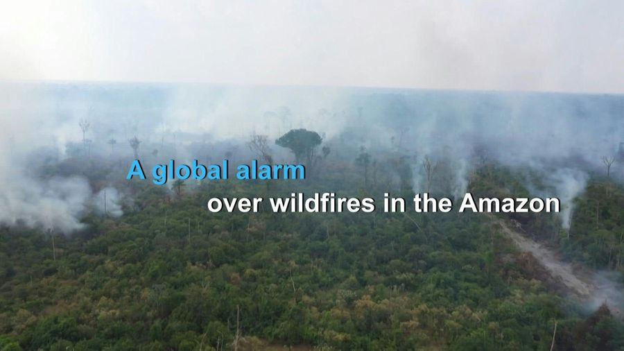 Wildfires ring alarm bells over deforestation in the Amazon