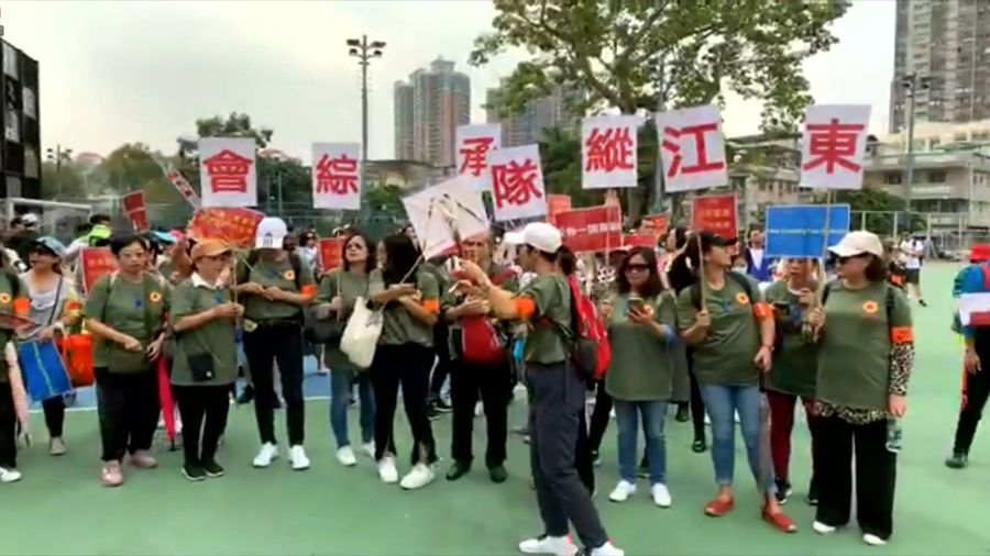 Pro-Beijing supporters gather in Hong Kong