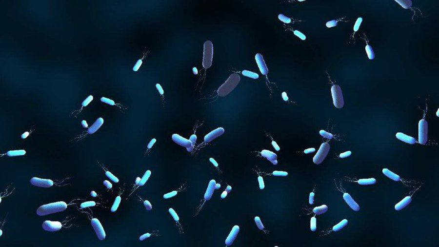 Bacterial resistance to antibiotics