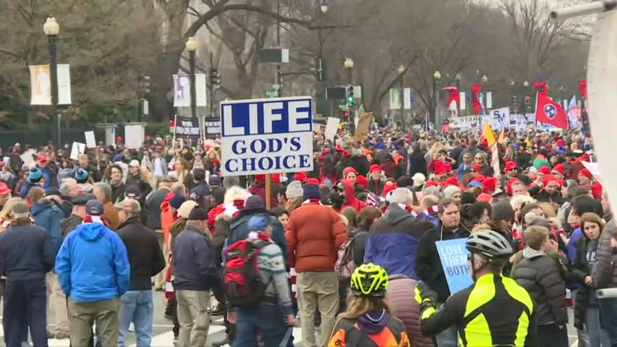 Pro-life campaigners take to the streets in Washington DC