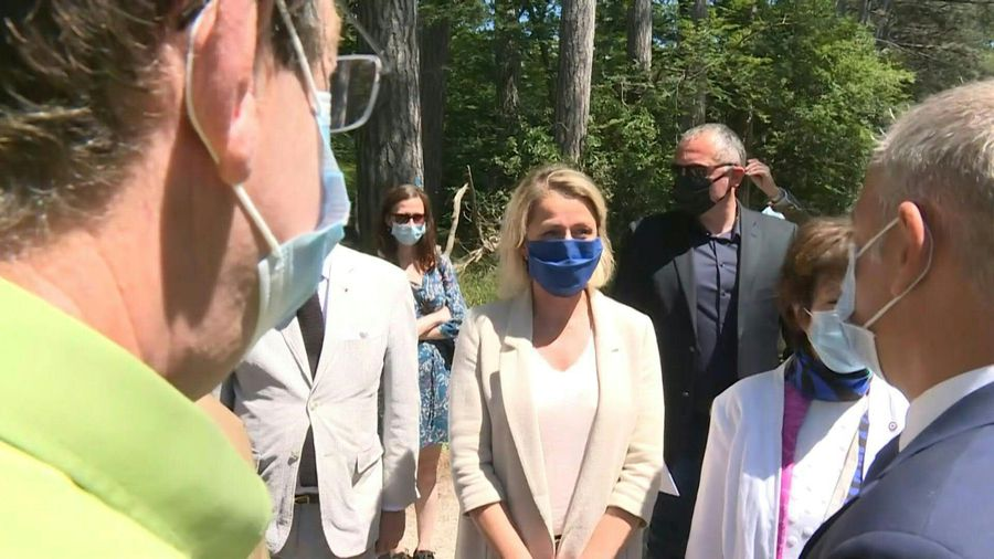 French ecology minister on awareness visit to Fontainebleau forest