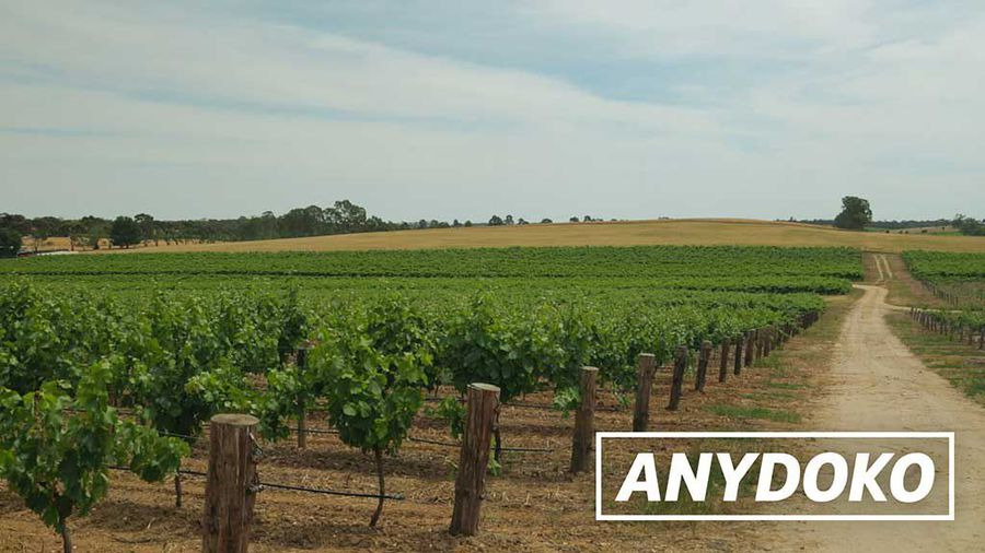 Two Days In The Barossa Valley