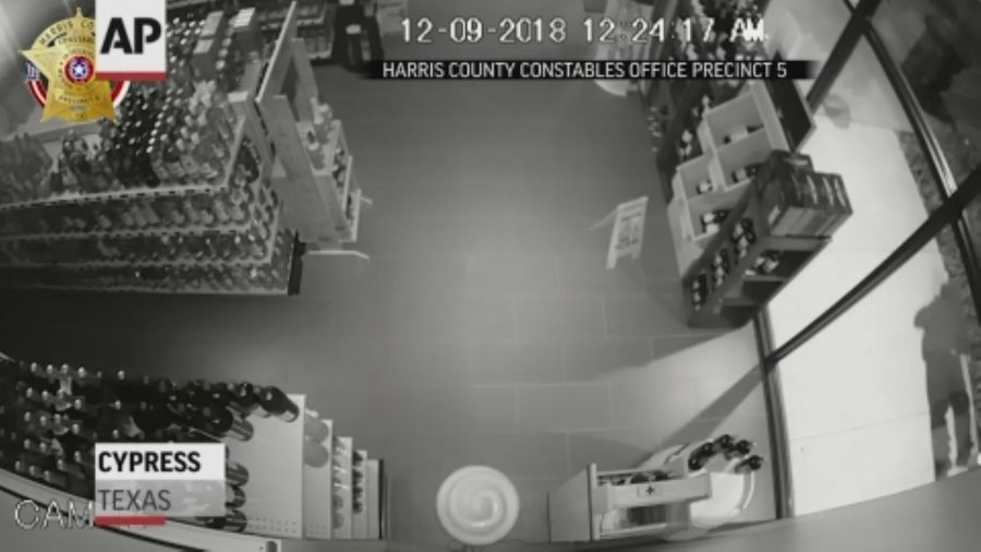 Clumsy burglars steal from Texas liquor store