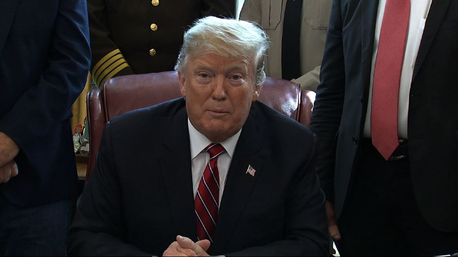 Trump issues first veto to protect border order