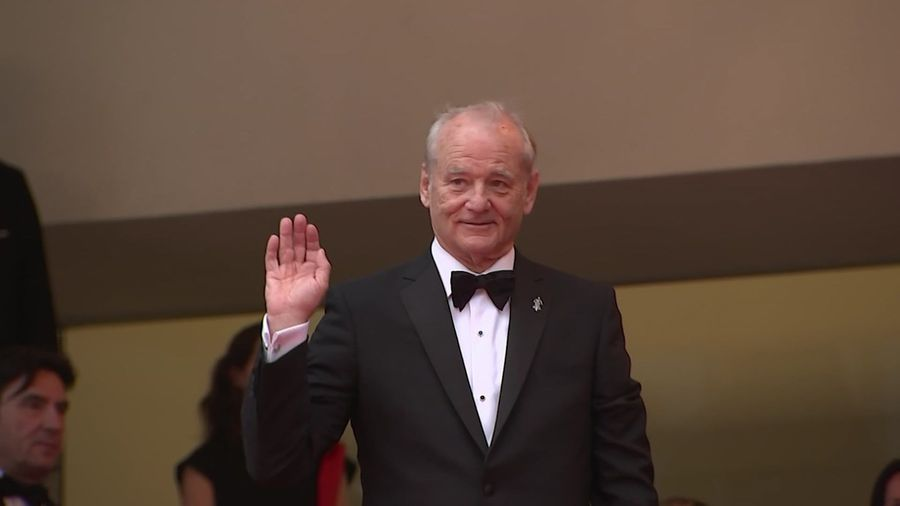 Zombie killer Bill Murray 'doing a public service'