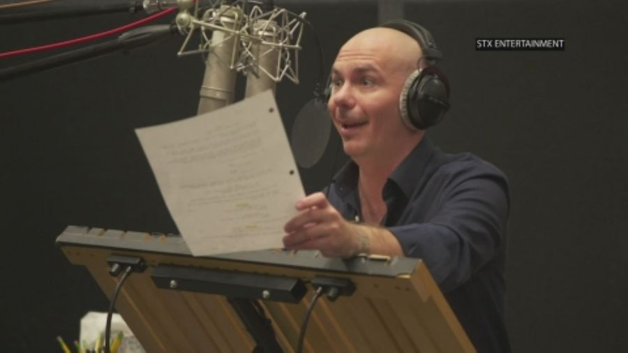Pitbull: 'I did it my way'