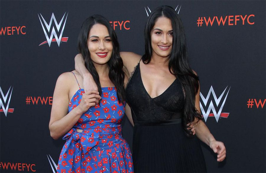 The Bella Twins: Our mother is 'on the road to recovery'