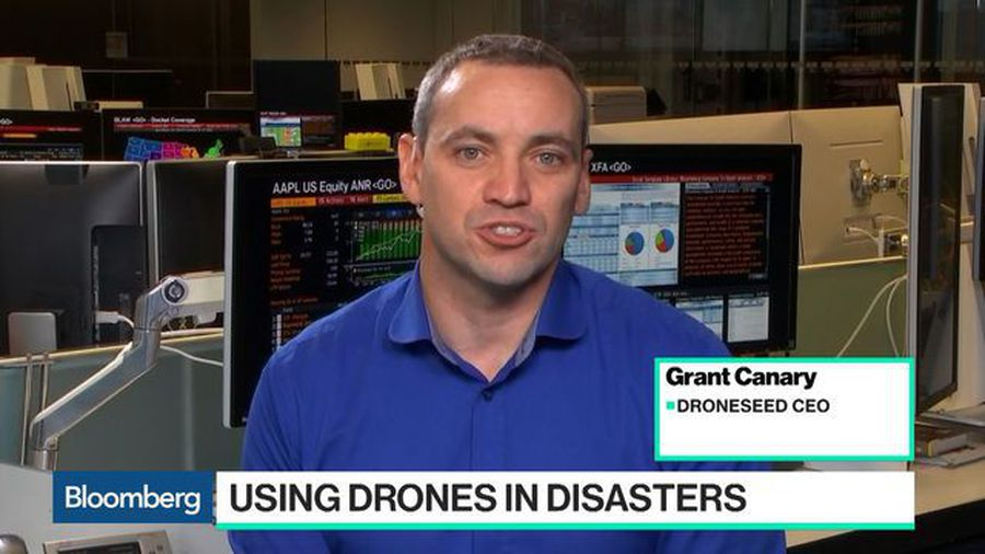 How Drones Can Plant and Protect Trees After Wildfires