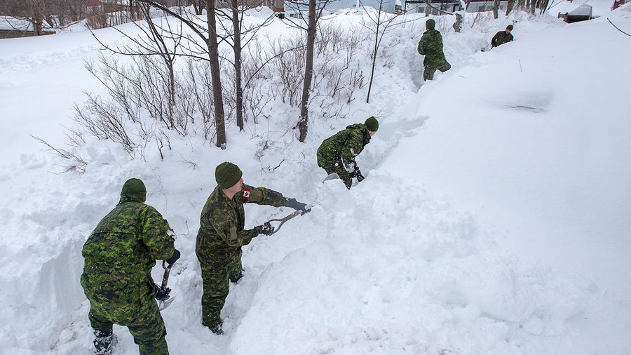 Defence Minister says 450 troops will help N.L. dig out from last week's monster snow storm