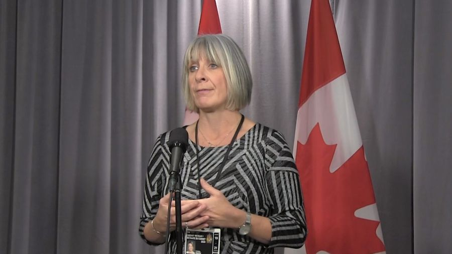 Health minister says Canadians at low risk for coronavirus