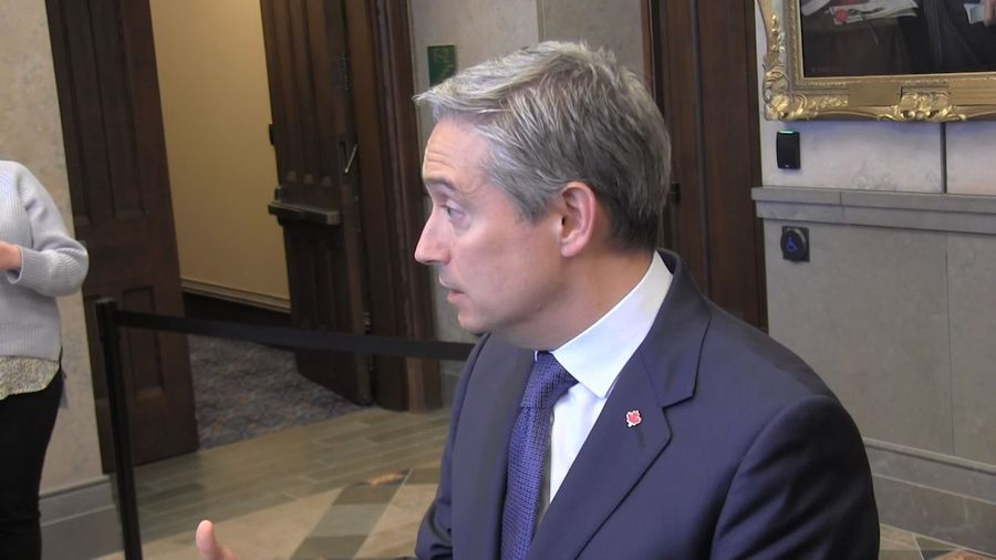 Foreign affairs minister explains why coronavirus infected Canadians cannot return home