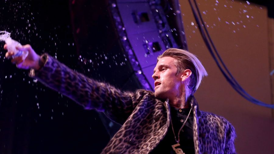 Aaron Carter accused of stealing lion design from Berlin artist