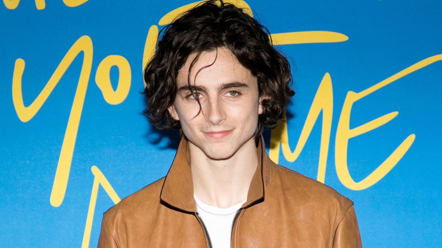 Woody Allen believes Timothee Chalamet denounced his to increase Oscar chances