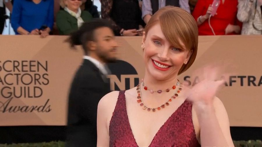 Bryce Dallas Howard to make documentary directing debut with 'Dads'