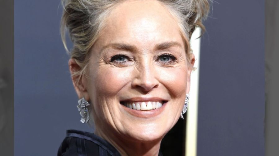 Sharon Stone loved her challenging 40s'