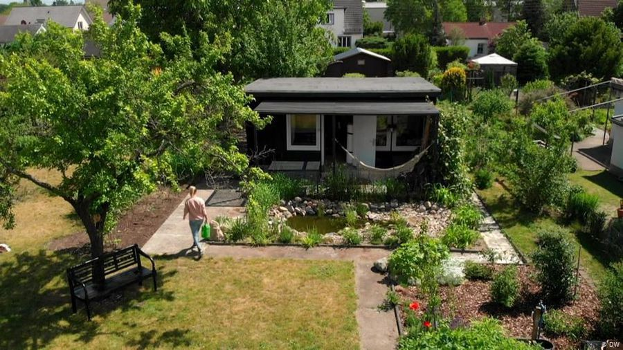 In praise of staycations: Allotment gardens