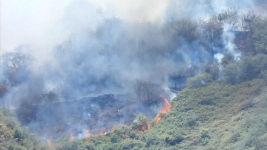 Gran Canaria wildfire rages out of control as 9,000 are evacuated