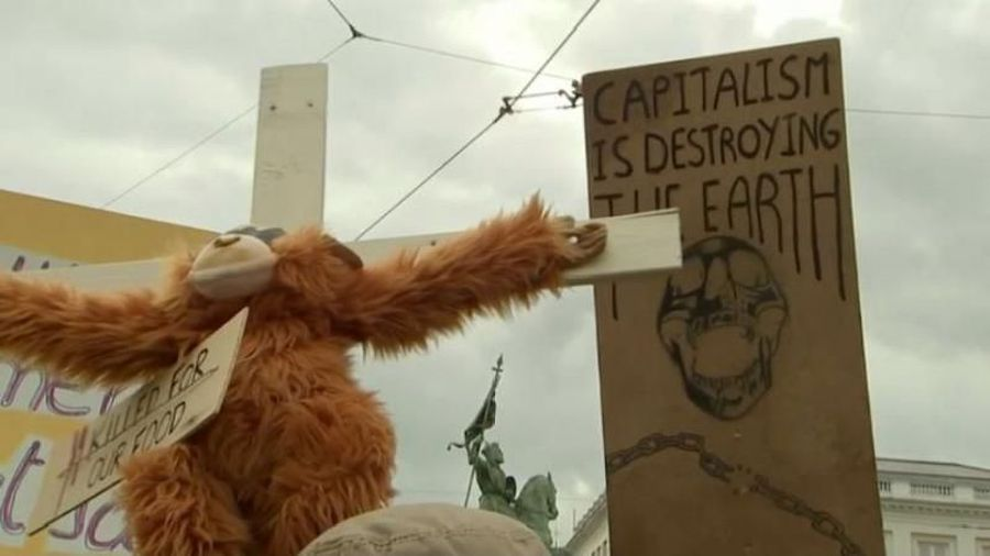 Extinction Rebellion activists call on Belgian king to declare climate emergency