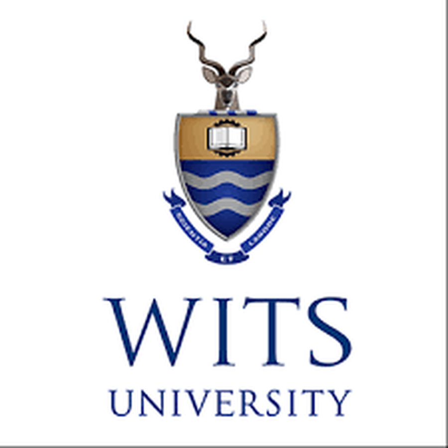 Wits University researcher gets international recognition