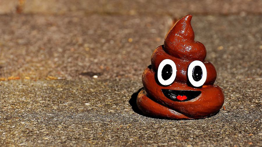Why You Now Have Plastic in Your Poop