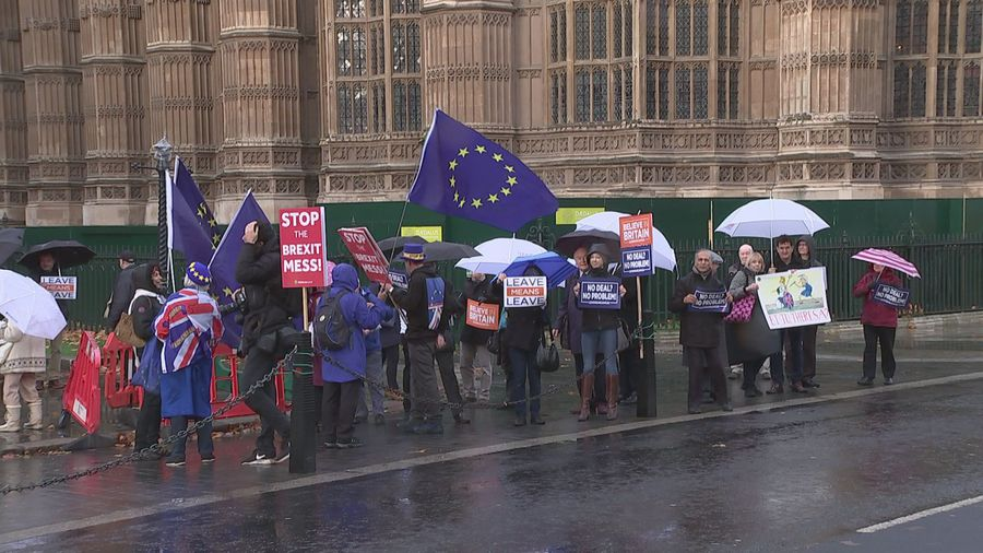 Pro- and anti-Brexit demonstrators brave rain in Westminster