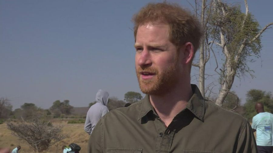 Prince Harry: We're losing the race against climate change