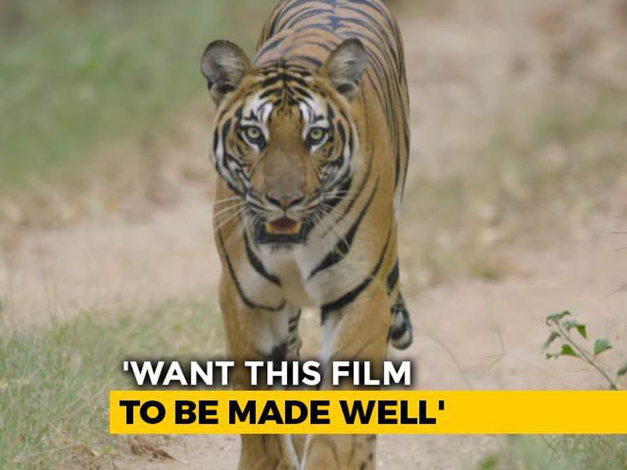 """Wild Mumbai"": After Karnataka, Maharashtra Works On Wildlife Documentary"