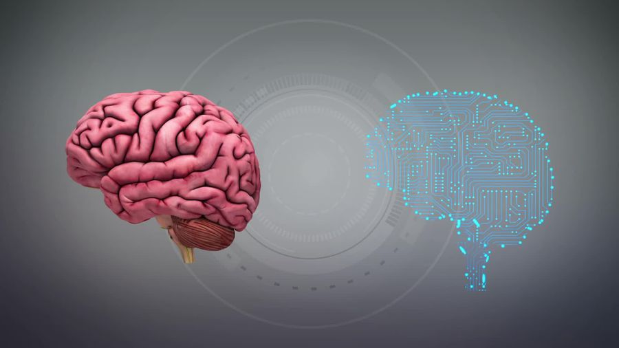 Elon Musk unveils implant device that links brain to computers