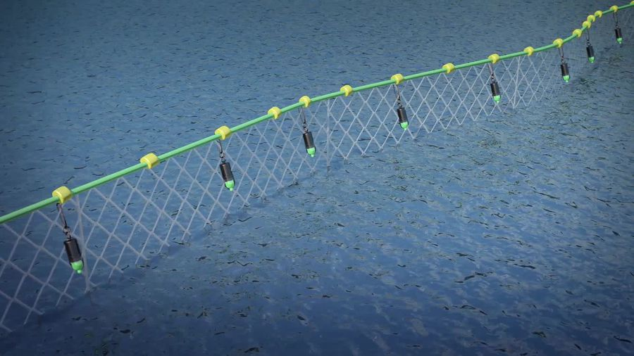 LED fishing nets could save turtles and dolphins