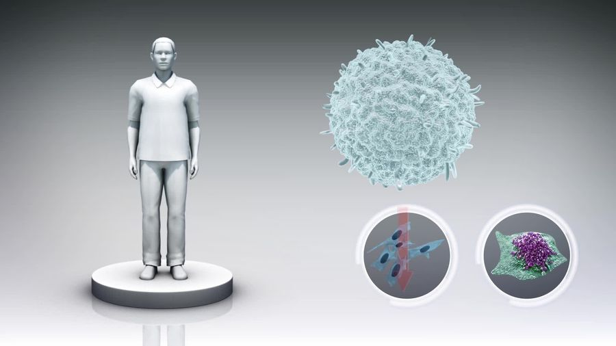 Immune discovery could be universal cure to cancer
