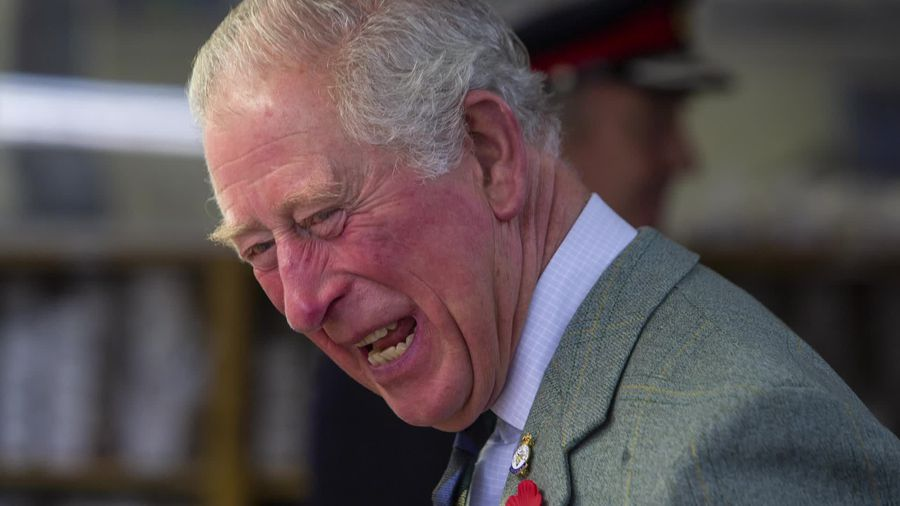 Prince Charles at 71: His life in pictures