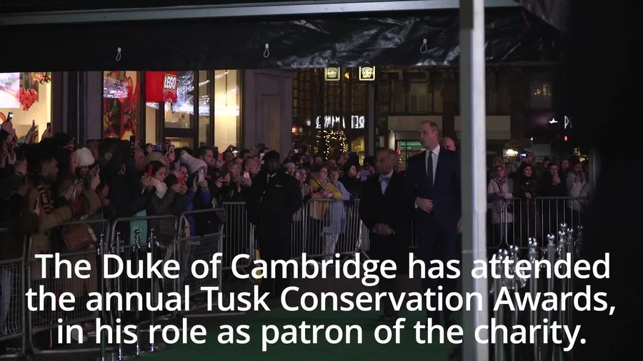 Duke of Cambridge attends Tusk Conservation Awards in London