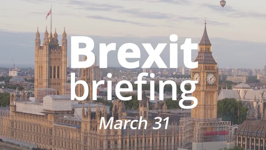Brexit briefing: 275 days until the end of the transition period