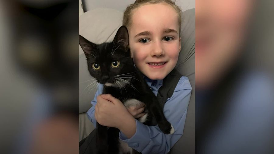Mum praises cat for easing the PTSD her six-year-old was left with after a car crash