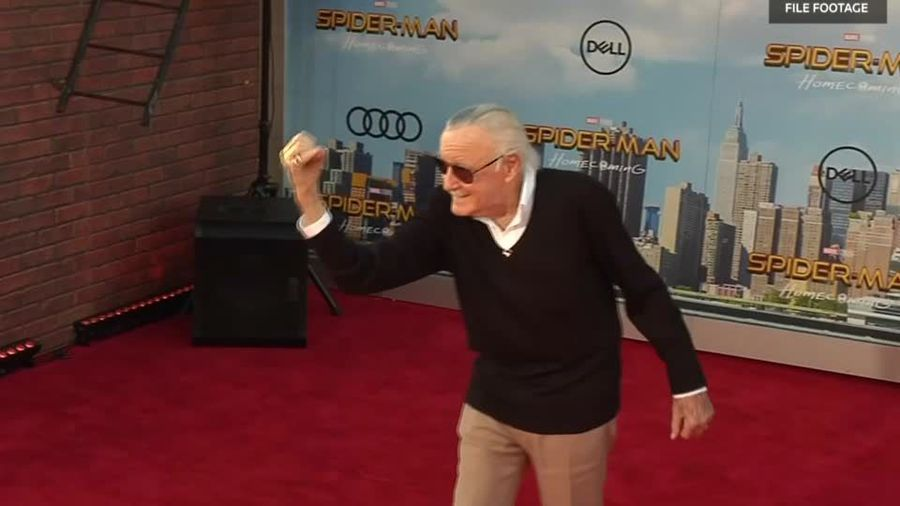 Spider-Man creator, comic book titan Stan Lee dies