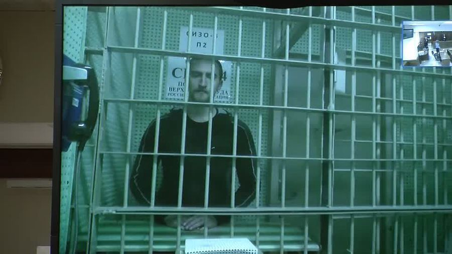 Russia frees jailed actor after public outcry over crackdown