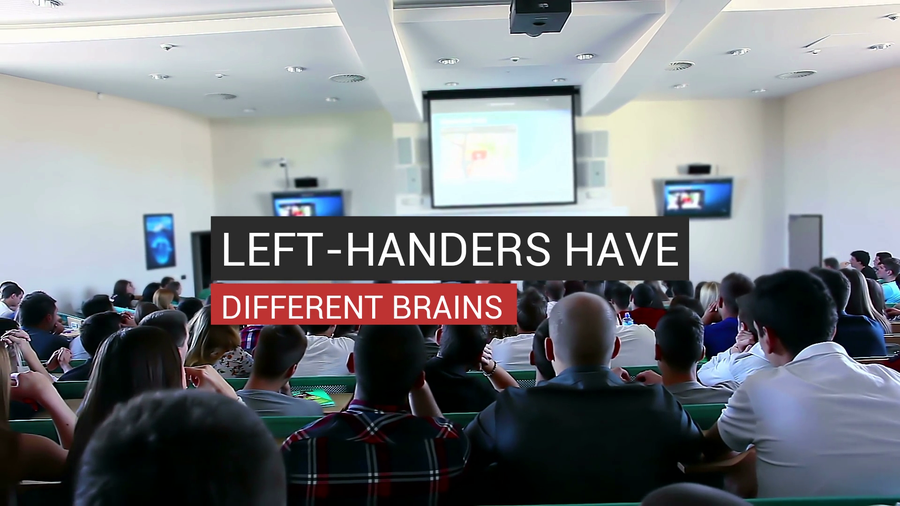 Are Lefties Physically Different?