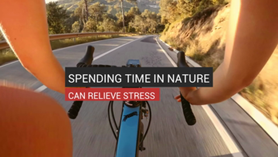 Spending Time In Nature Can Relieve Stress