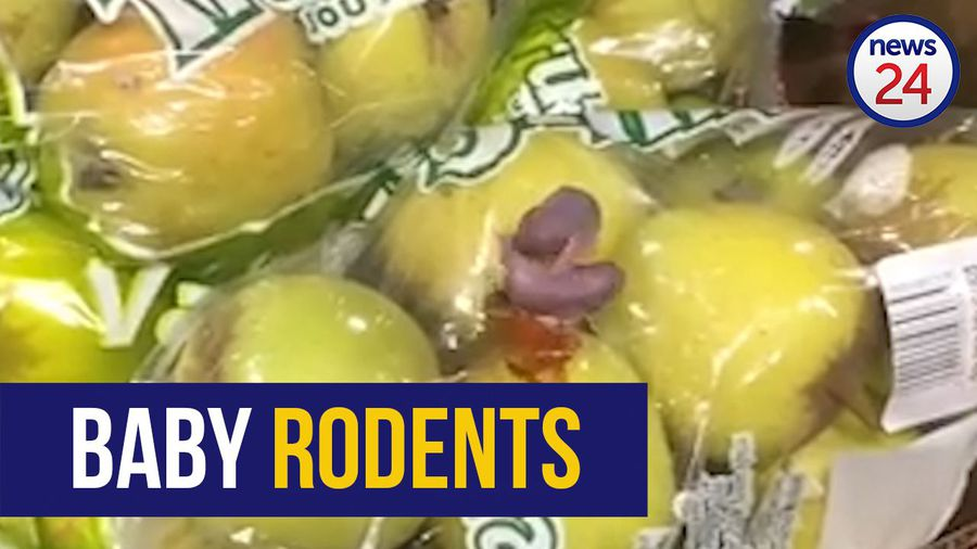 WATCH: Baby rodents frolic in fruit section at Food Lover's Market Jabulani Mall