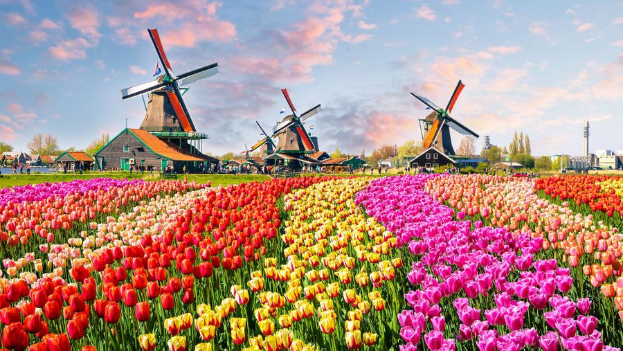 Spring over to these Northern Hemisphere spots for Easter