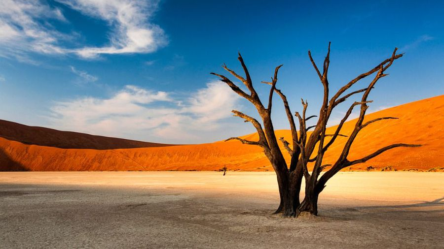 Quick Guide to Namibia