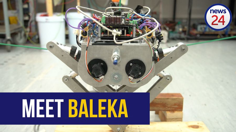 WATCH: UCT students build SA's first jumping robot