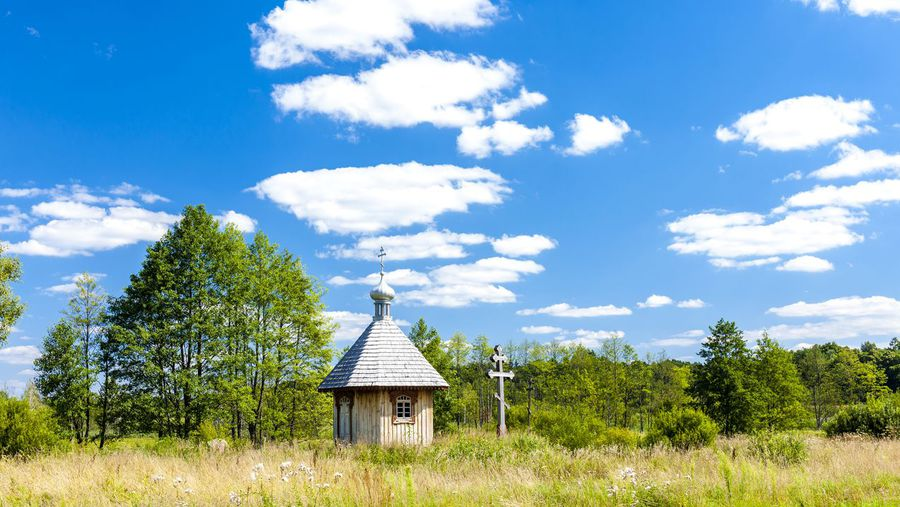 The saints come marching in: The wooden churches of Poland