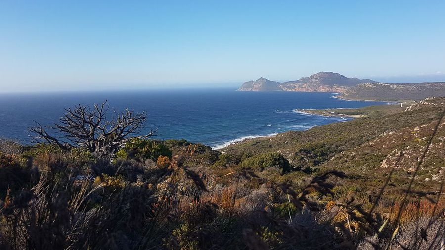 Hiking through the fynbos of Cape Point