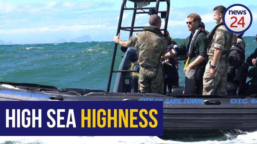 WATCH: Prince Harry's visit to Kalk Bay puts the spotlight on abalone poaching