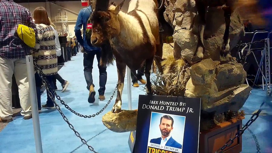 An undercover look inside one of the world's biggest hunting conventions