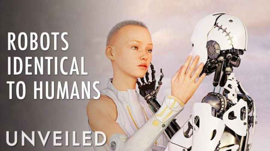 What If Robots And Humans Were Identical?