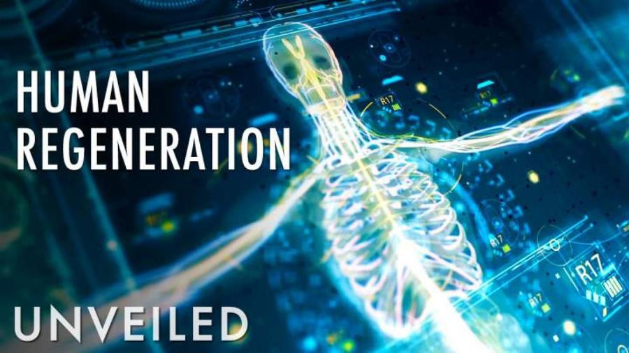 What If Humans Could Regenerate? | Unveiled