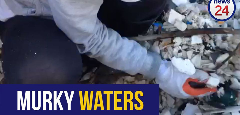 WATCH | Volunteers collect 128 kgs of plastic bottles from Cape Town river in 3 hours